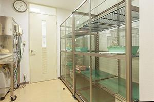 小鳥のセンター病院・池袋の入院施設